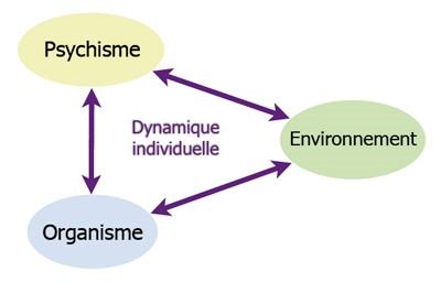 Psychisme, corps, environnement (écosystème personnel) sans un concept de santé globale (Santé Vivante)
