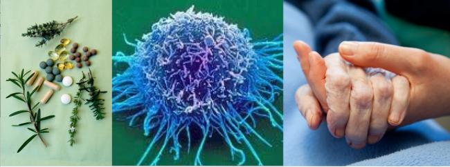 Les facteurs non médicaux qui favorisent la guérison des cancers